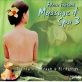 Balinese Traditional Massage & Spa 3