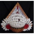 Baris Headdress (plastic)